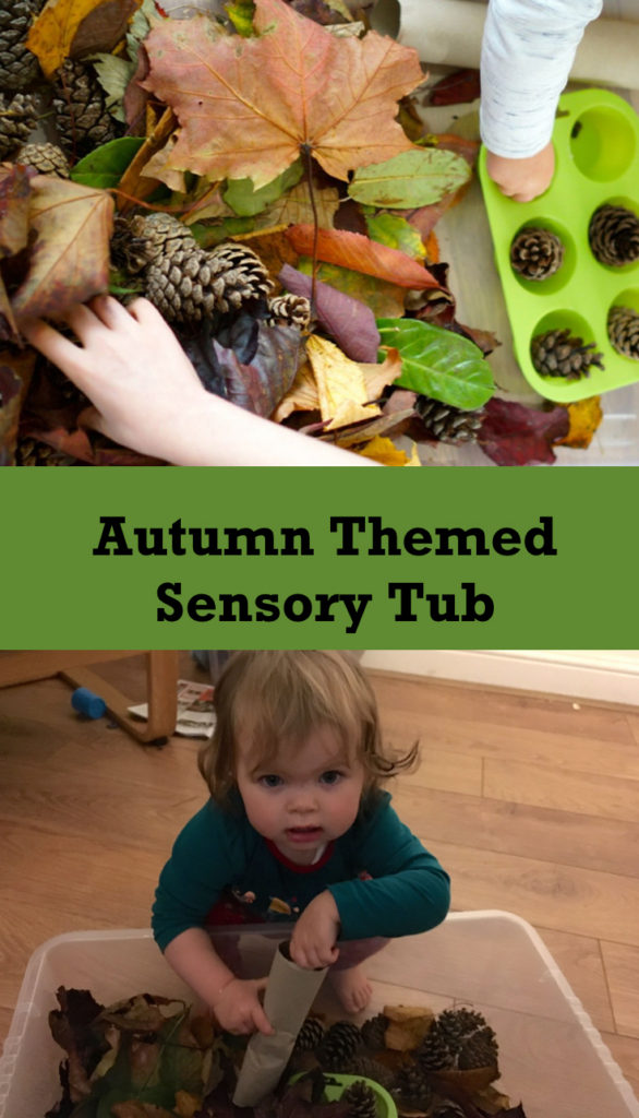 Bamm Boo - How and Why to Set up an Autumn Sensory Bin For Toddlers